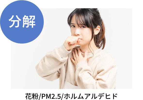 分解 花粉/PM2.5/ホルムアルデヒド